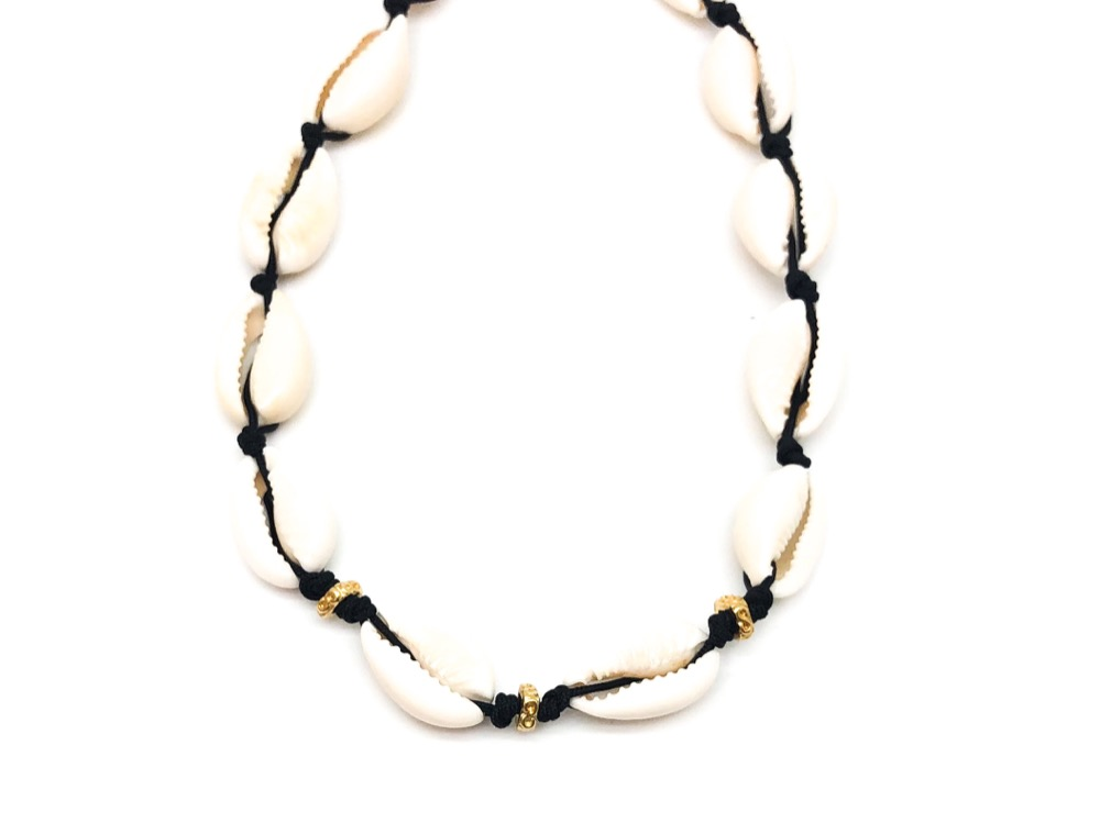 Phoebus Sea Shell Necklace